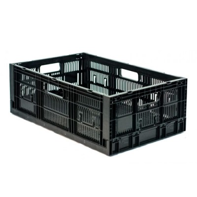 Caja CPR Colapsable 21